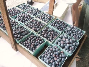 local blueberries